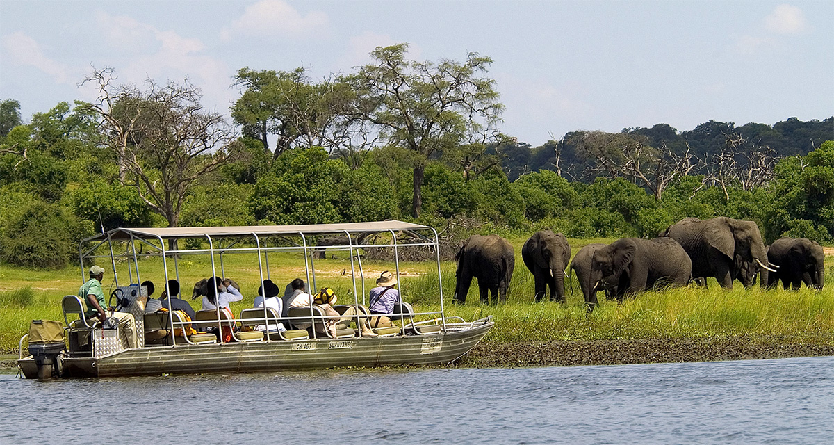 Chobe River Safarisimage