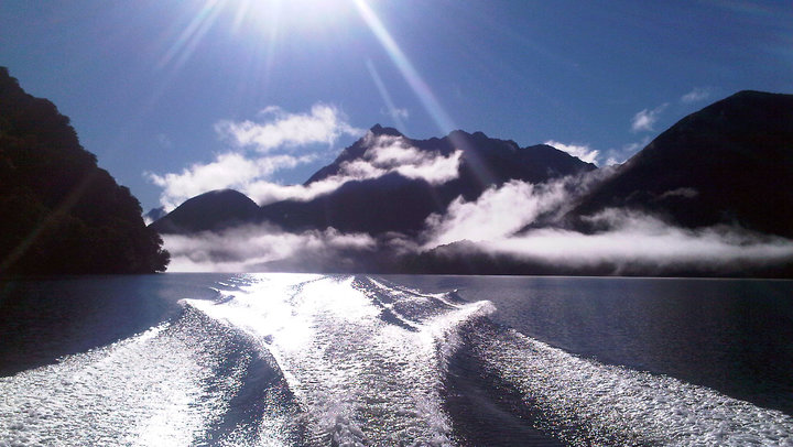 Fiordland Cruise (Southern Fiords)image