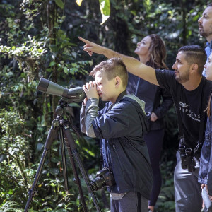 Costa Rica Family Journey: From Rainforest to Coast