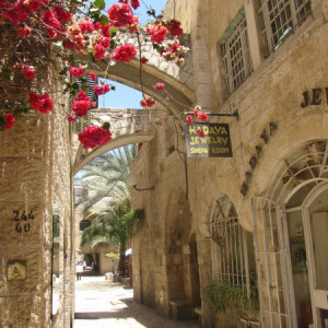 10-Day Holy Land Tour