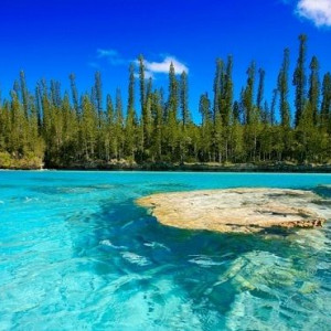 New Caledonia on Sale