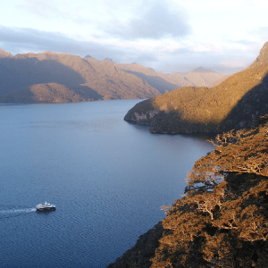 Fiordland Fishing Trip