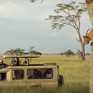 Kenya & Tanzania: The Safari Experience