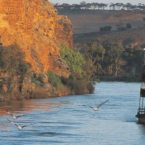 Murraylands & Wildlife Cruise