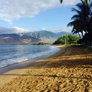 Maui with Hawaiian Airlines - Business