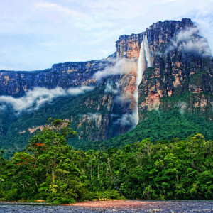 Angel Falls Safari